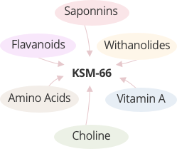 6. Make sure your ashwagandha extract is a full-spectrum extract.